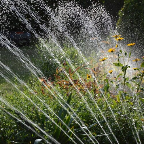 best solar pumps for irrigation